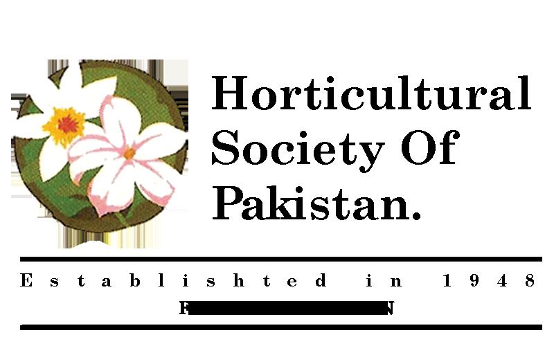 HSP logo bw