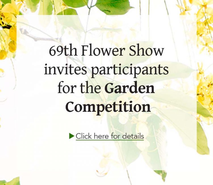 garden-competition_thumbnail_homepage